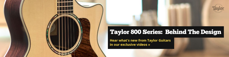 Behind the Taylor 800 Series with Andy Powers